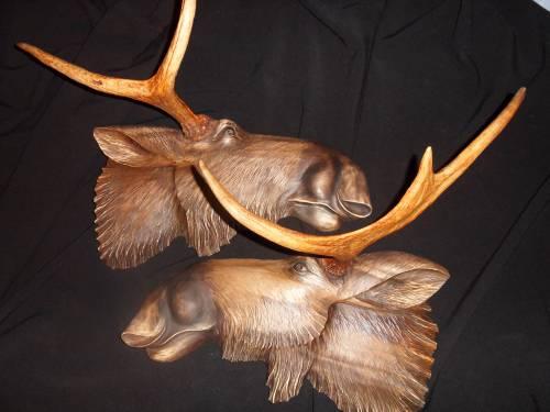 Как сделать вешалку из рогов косули